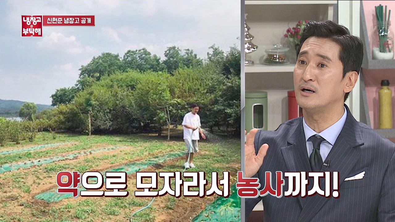 땅을 사서 농사까지 짓는 '유기농 마니아' 신현준 (대단) #냉장고를부탁해