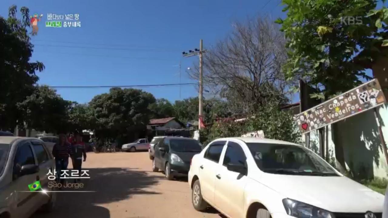 비디오 스틸컷