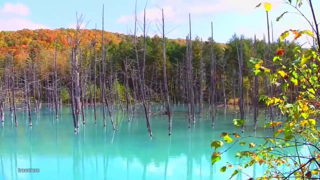 일본에 실존한다는 호수의 모습