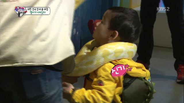 삼둥이 뱀, 송일국 기겁