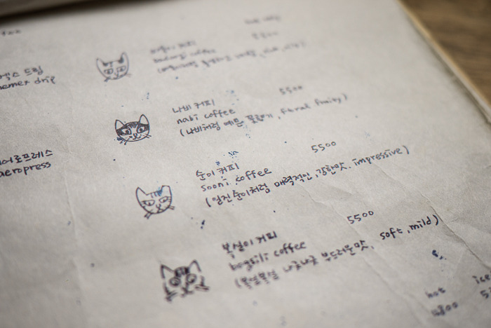 홍대 제너럴닥터 - 고양이와 함께