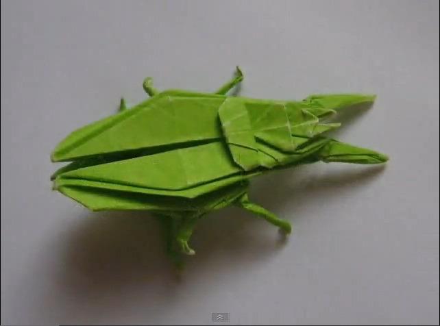 딱정벌레 (John Montroll) 곤충 종이접기 동영상