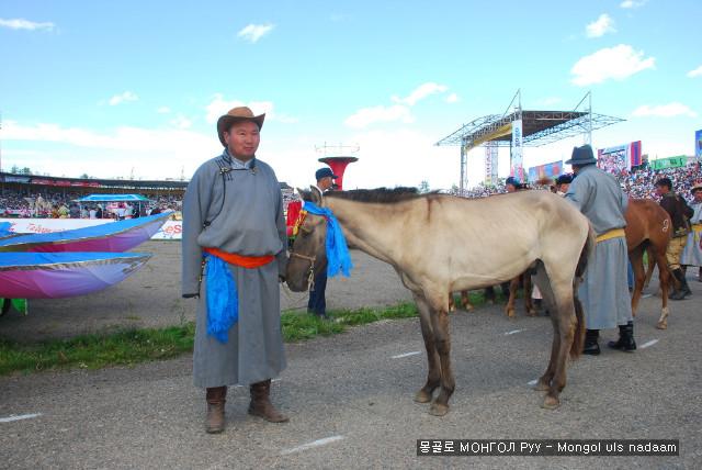 말,경주마,승마,몽골말,몽골축제여행