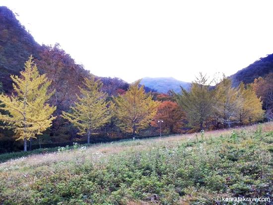 가을풍경이미지