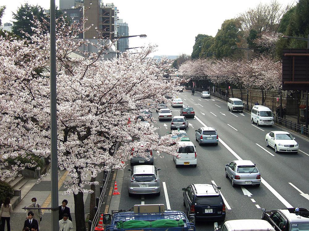 일본여행 - 그 다음 다음의 이야기 : 15687347513CBAA301BB24