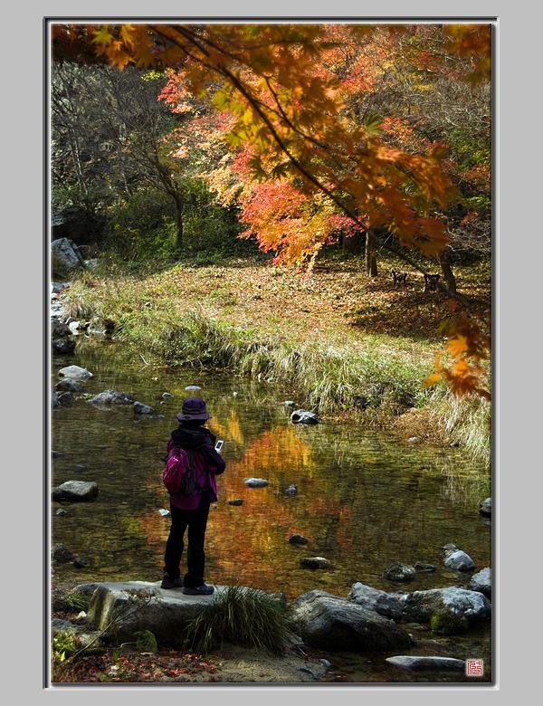 [Fuji s5pro] 담아봅시다. 가을을...