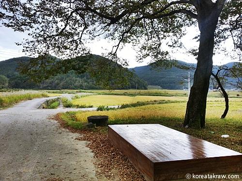 가을농촌풍경사진
