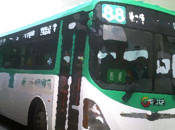 승객의 안전은 뒷전, 나 몰라라 하는 버스 운전기사