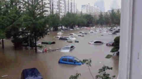 폭우 피해 보상금 및 보험사 보험료