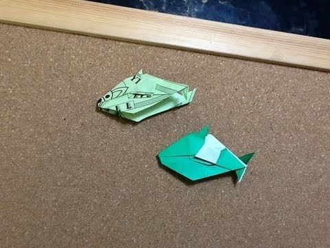 달러 물고기 (Jodi Fukumoto) 종이접기 동영상