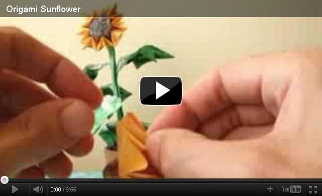해바라기 꽃