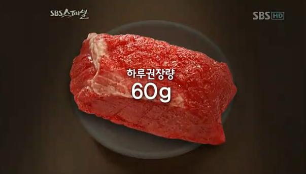 SBS스페셜, 붉은고기, 대장암, 고기다이어트, 황제다이어트, 애킨스다이어트, 붉은고기섭취정량, 대장암사진 #2