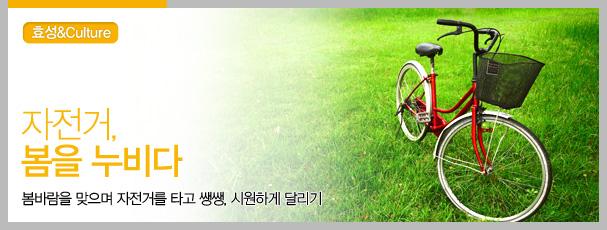 자전거, 봄을 누비다
