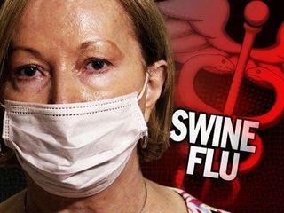 신종 플루 (Swine Flu)