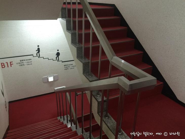 칼로리 건강계단, 계단 걷기 효과