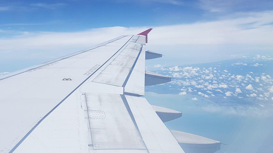 임산부 비행기 해외여행