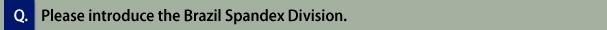 Q. Please introduce the Brazil Spandex Division.