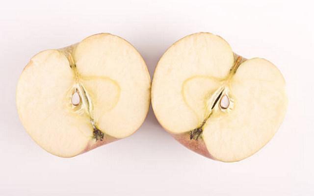 간에좋은건강기능식품 사과효능 밀크씨슬