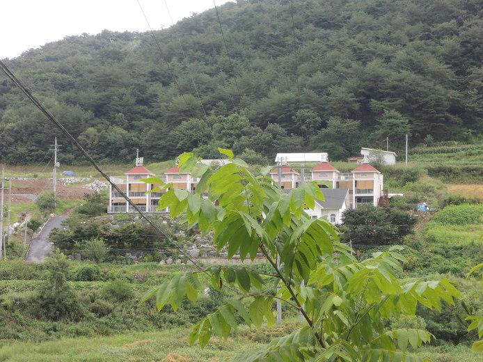 딴산유원지 캠핑장