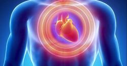 마그네슘 심장병