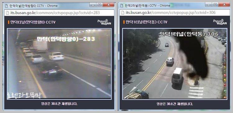 지도서비스에 없는 교통정보(CCTV) 보는 방법4