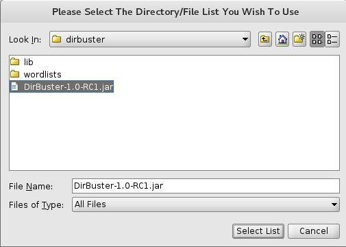 임시 :: 웹 퍼징 도구 DirBuster 소개