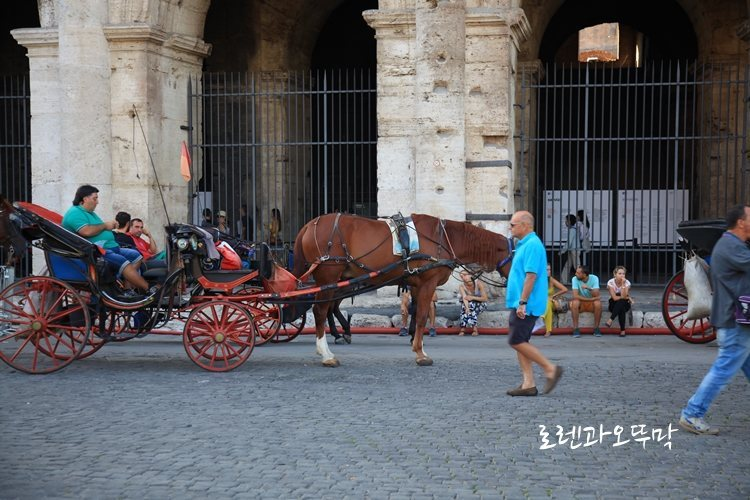로마 여행 1탄 '콘스탄티누스 개선문'과 '콜로세움'의 위엄14