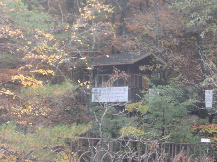 강릉 추천 여행지 명승1호 청학동 소금강 계곡