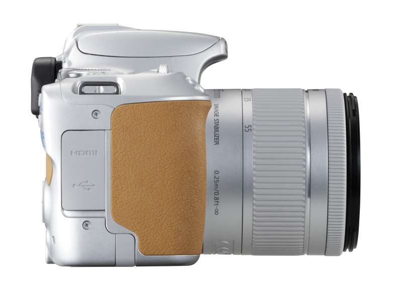 캐논, CANON, CANON EOS 100D, CANON EOS 200D, 캐논 200D, 캐논 100D, DSLR, DSLR카메라, 캐논 DSLR 카메라, 카메라, 사진, 리뷰, 100D 후속