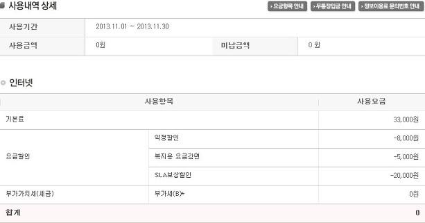 SK브로드밴드 인터넷 2013년 11월 사용내역
