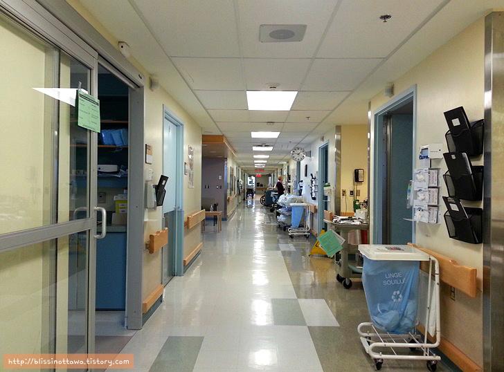 캐나다 병원 의료서비스 설명