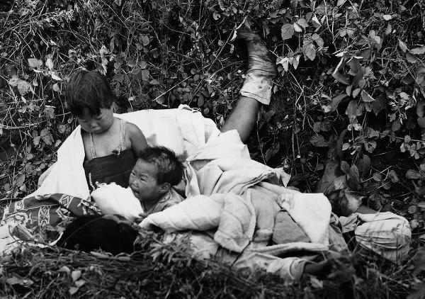 사진: 죽은 부모의 시신 곁에서 어린 아이들이 울부짖고 있다. 6.25전쟁의 발발에서부터 휴전까지... 피난민 피해 뿐 아니라 민간인 사상, 학살과 군장병들의 끝없는 희생이 계속된 비극이었다.