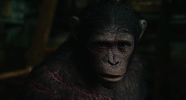 혹성탈출 : 반격의 서막 (Dawn of the Planet of the Apes)