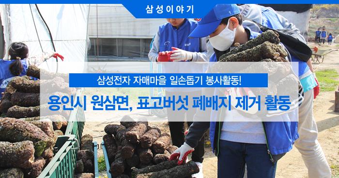 표고버섯 폐배지 제거 활동