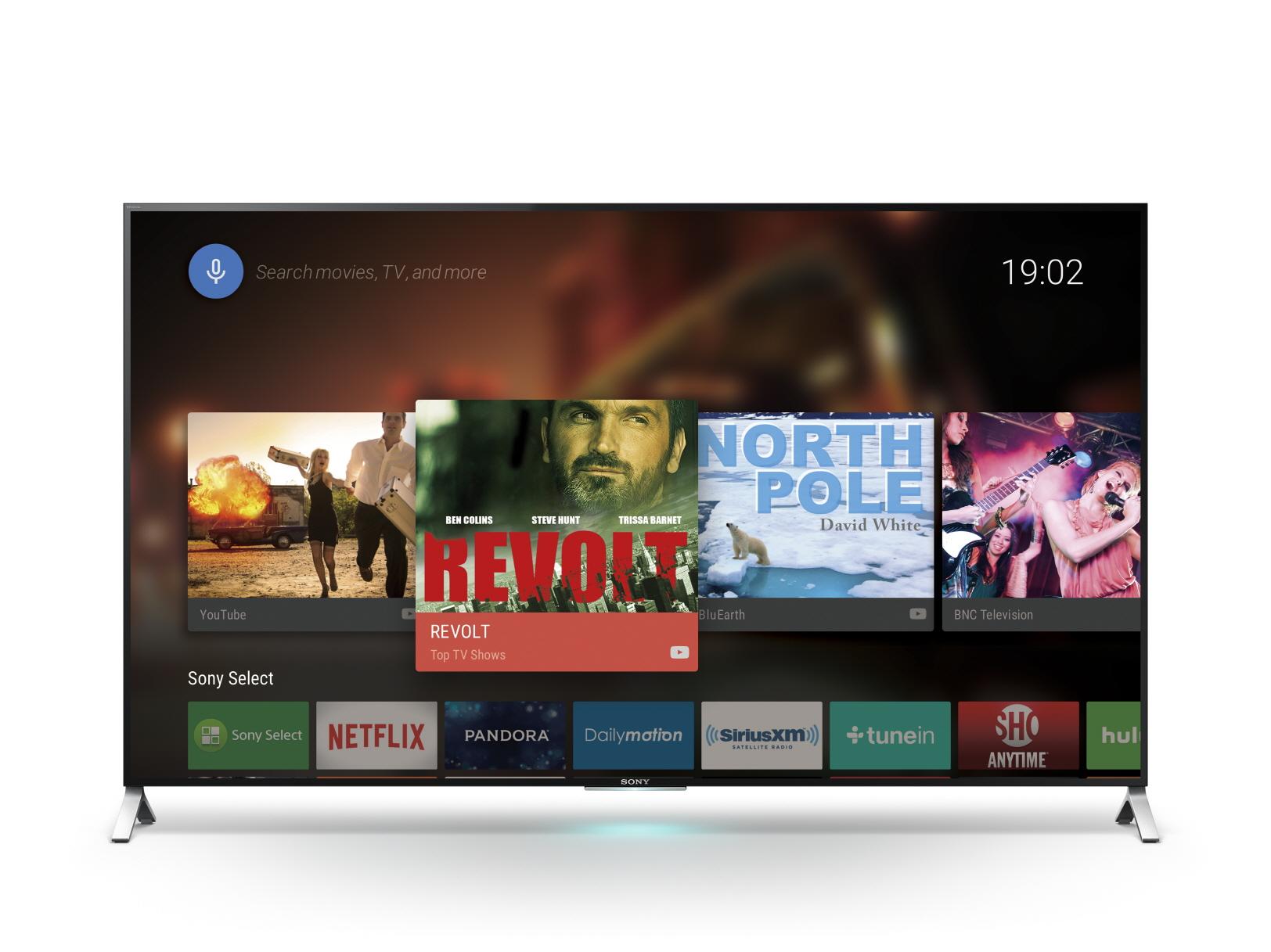 TV: KD-65X9005C