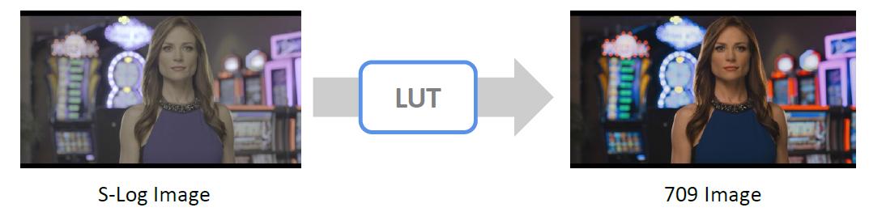 LUT-1