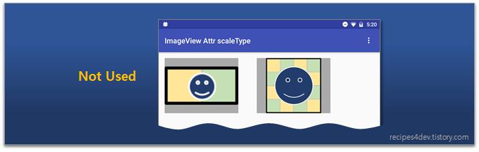 scaleType 사용하지 않을 때 표시 화면