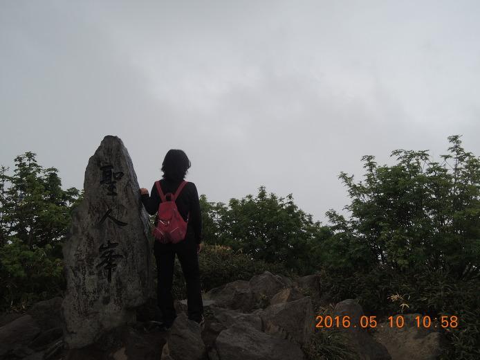 울릉도 성인봉 등산코스