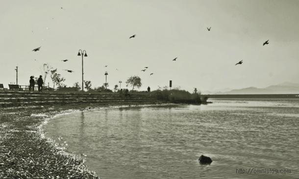 낙동강 산책로에서   담아온 풍경