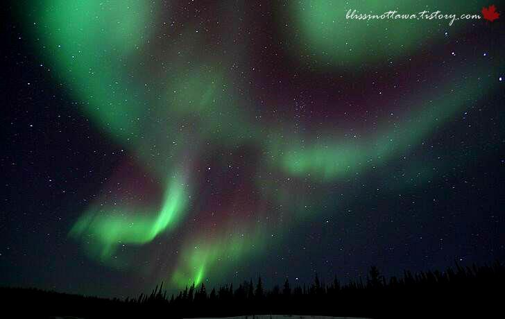 캐나다 옐로나이프의 오로라입니다