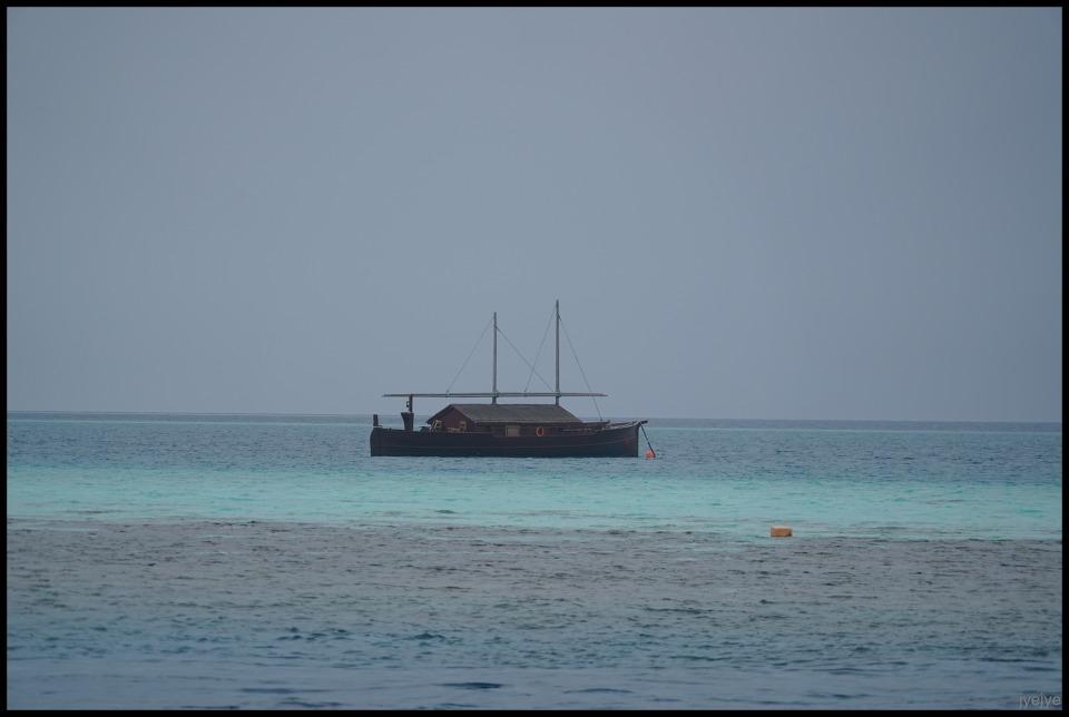 몰디브 배 도니
