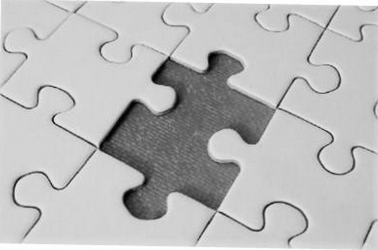 The Missing Puzzle In Your Life BERKELEY OPINION