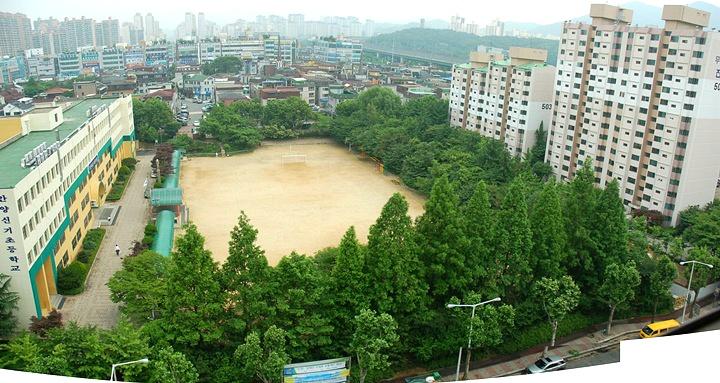 안양신기초등학교 학교숲 완충녹지