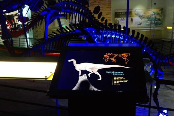 전남 해남 공룡박물관