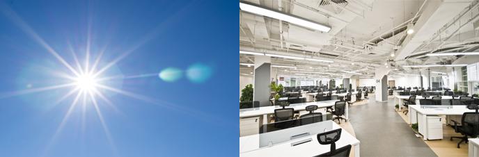 햇빛과 텅 빈 사무실
