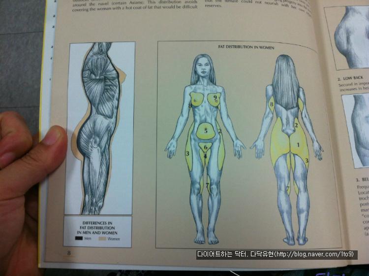 비우기모임 - 다닥유현의 비만자조모임 :: 여자를 위한 근육운동가이드 ...