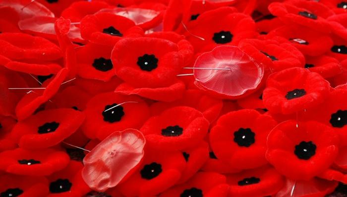 양귀비 브로치 전사군인 기념