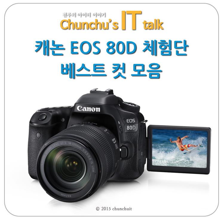 캐논 EOS 80D 베스트 컷 모음