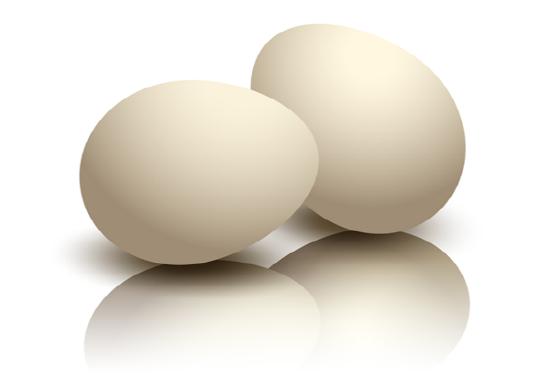 달걀나누어담기