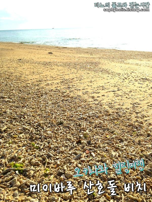 오키나와 미이바루 비치 5월 황금연휴 오키나와해변 산호 별모래